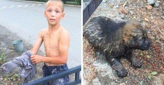 12 letý kluk zachránil štěně před okapem: nemohl opustit zvíře, které potřebuje pomoc