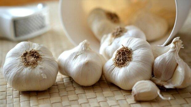 Neobvyklý způsob skladování česneku, aby nedošlo ke ztrátě jeho výhod po celou zimu