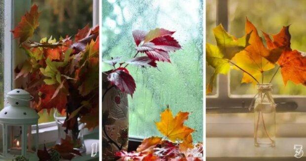 Ženský psychologický test: Vybraný vámi podzimní list prozradí více o vašim vnitřním světě